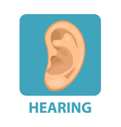 Sensitive hearing icon flat style ear isolated vector