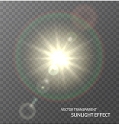 Sun sunlight with rays and lens flare lights vector