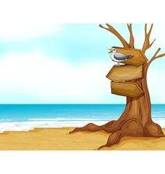 A beach with wooden signboard vector image vector image