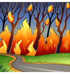 Disaster scene of forest fire vector image vector image