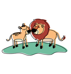 Lions couple over grass in watercolor silhouette vector