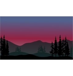 Spruce in hills scenery vector