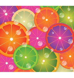 Lime circles vector