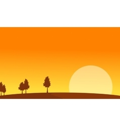 At sunrise scenery with tree backgrounds vector