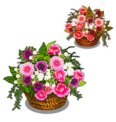 beautiful basket of pink and white flowers vector image vector image