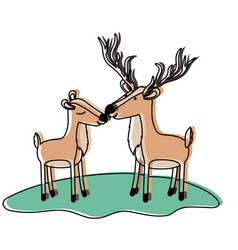 Deer couple over grass in watercolor silhouette vector