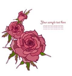 Greeting card with roses vector image vector image