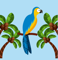 Macaw bird icon vector