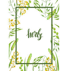 Frame with herbs and cereal grass floral design vector