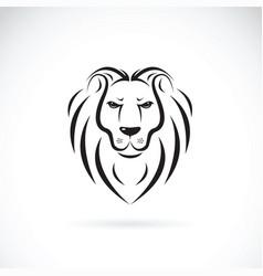 lion head design on white background wild vector image