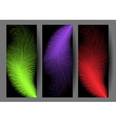 Abstract colorful feather banners vector image vector image