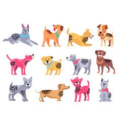 Domestic dogs of pure breeds big set vector