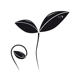 Growing plant silhouette vector