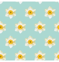 White daffodil seamless background vector
