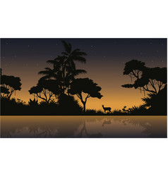collection stock of jungle landscape silhouette vector image