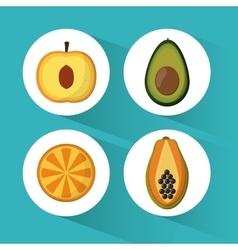 Fruit icon design vector image vector image