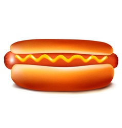 hot dog with mustard vector image vector image