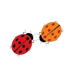 Ladybird two isolated vector