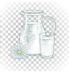 hand drawn milk jug and glass of milk with daisy vector image