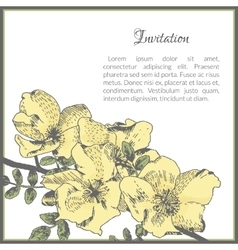 Invitation card template with dog-rose flower vector