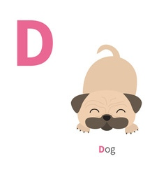 Letter d dog pug mops zoo alphabet english abc vector