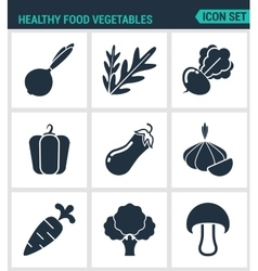 Set of modern icons healthy food vector