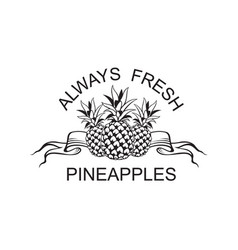 Emblem of pineapple fruit vector