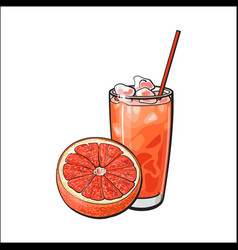 Half grapefruit and glass of freshly squeezed vector