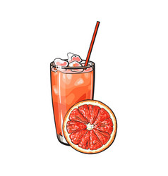grapefruit slice and glass of freshly squeezed vector image