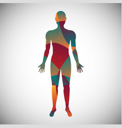 Human body color abstract style vector