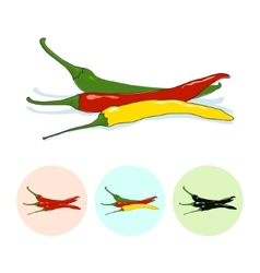 Icons hot chili pepper vector