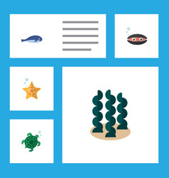 flat icon sea set of scallop tortoise alga and vector image