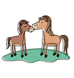 Horses couple over grass in watercolor silhouette vector