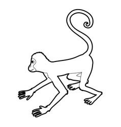 Playful monkey icon outline vector