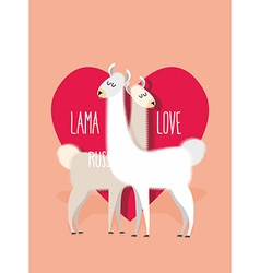 Lama love two llama alpaca on ackground of heart vector