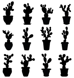 Silhouettes of cactus vector