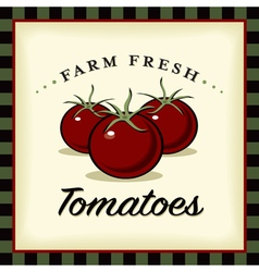 Farm fresh tomatoes vector