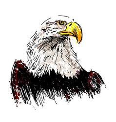 Colored hand drawing eagle vector