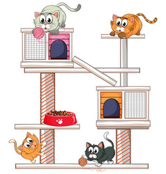 cats playing on cat condo vector image vector image