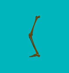 Flat shading style icon leg bone vector