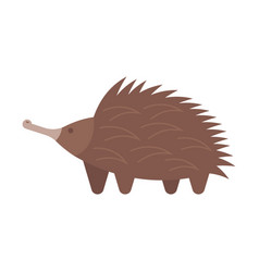 Flat style of echidna vector