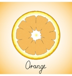 Fresh ripe slice of orange vector