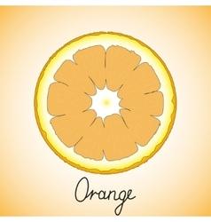 Fresh ripe slice of orange vector image