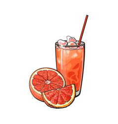 Grapefruit half slice glass of juice with ice vector