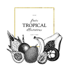 Tropical fruits design vector