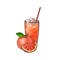 Grapefruit whole and piece glass of squeezed vector