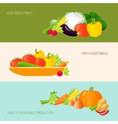 Vegetables banner set vector