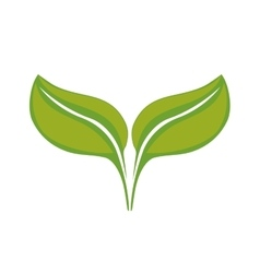 Leaf icon nature plant design graphic vector