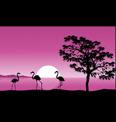 Collection flamingo at sunset background vector