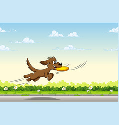 dog catches a frisbee in the jump vector image